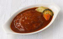 煮込みハンバーグ(デミグラスソース)