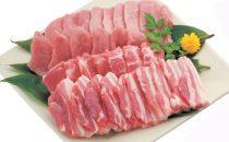 高座豚 3種食べ比べ焼肉セット
